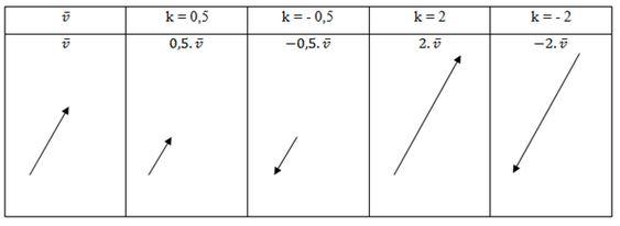 Tabel Perkalian Vektor